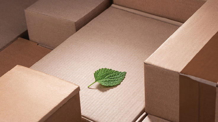 Corrugated board material with leaf on top