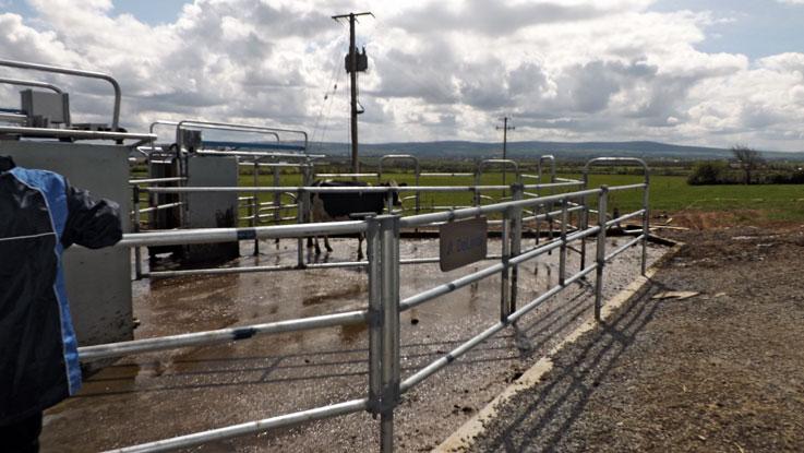 DeLaval VMS on grasslands for robotic milking